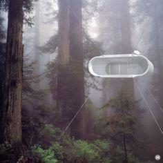Lifepod / Treehouse