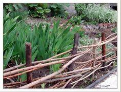 wattle fence around the iris bed