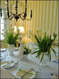 All white tulips on pale blue tablecloth