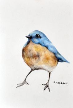 Small blue bird 2  Original colored pencil drawing by PrismaticArt.