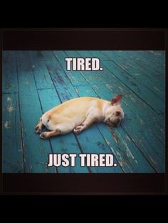 As a mom of a little one this describes today perfectly. Tired. Just tired.