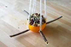 Stuffed orange bird feeder (picture only).