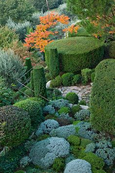 ✮ The La Louve, a private garden in France: a gorgeous tapestry of clipped shapes in grey and green.