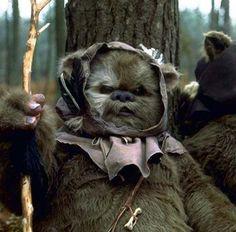 Ewok. I want one.