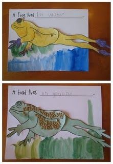 What's the difference between frogs and toads? Read, learn, and craft with free downloadable templates.
