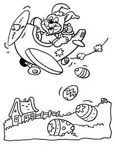 paashaas in een vliegtuig