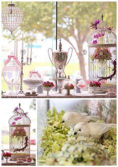 Love Birds theme idea
