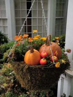 Hanging basket with golden mini mums, pansies, pumpkins and faux lady apples.
