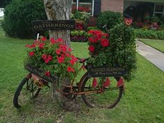 Bicycle with Baskets