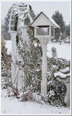 Snow Day Photo's