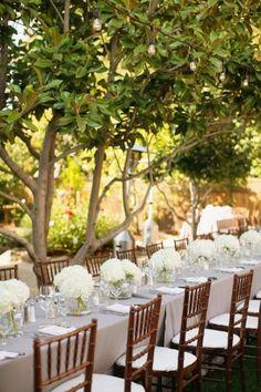 White Hydrangea Arrangements on Long Reception Tables