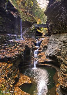 Watkins Glen State Park in New York state is the most famous of the Finger Lakes State Parks, with a reputation for leaving visitors spellbound.