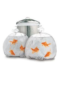 Goldfish Bin Bags