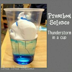 Water cycle and weather science project