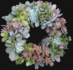 Beautiful succulent wreath