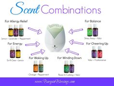 Essential Oil Scent Combinations to Boost Your Day!