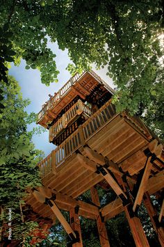 50-foot treehouse at Arbor Day Farm.