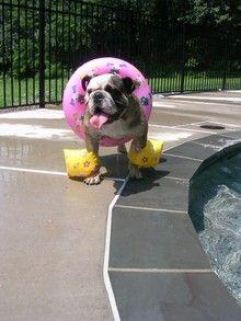 I love to swim