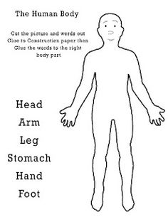 Free #printables for human body study #toddlers