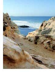 Torrey Pines....hike from the reserve down to the beach through the cliffs