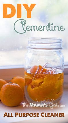 DIY Clementine all natural cleaner.