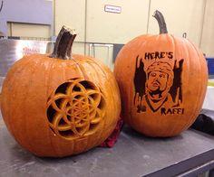 Ryan presents his Raffi Torres daze inspired #Sharkoween pumpkin.