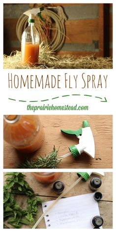 Homemade fly spray
