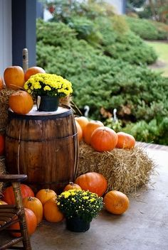 Wine barrel and autumn decor