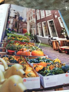 Amsterdam produce stand