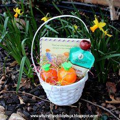 Infant Baby Easter Basket Ideas basket idea, infant babi, easter basket