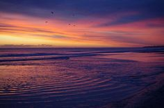 This photo was taken by Alison Hill - Druridge Bay.
