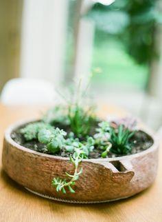 Tiny succulents | Photography: Yazy Jo - yazyjo.com  Read More: http://www.stylemepretty.com/living/2014/09/22/la-la-lovely-home-tour/