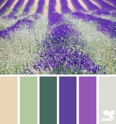 Beige, green, purple and gray