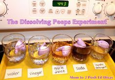 Mom to 2 Posh Lil Divas: The Dissolving Peeps Experiment