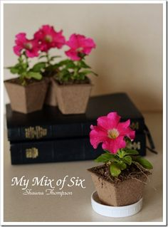 Spritual Food FHE - kids water their own plant ONLY after reading their scriptures. No reading - no watering. Feed their souls and their plants.
