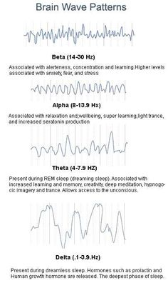Brain wave patterns: Beta, Alpha, Theta, Delta (Not pictured, Gamma waves - 40 hz above - these are use for higher mental activity such as for problem solving, consciousness, fear.)