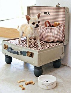 Pups like to get inspired to travel as well! Here's a sweet dog bed made with a vintage suitcase.
