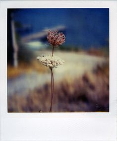 Summer Time, photography by Marianne Le Carrour