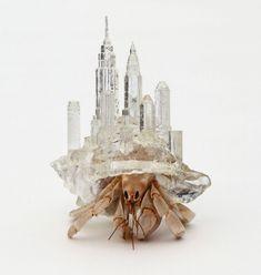 Hermit Crab Habitats with Architectural Cityscapes by Aki Inomata