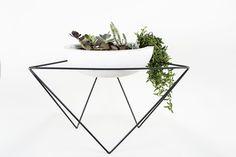medium plant, plant holders, plant stands, kkdw plant