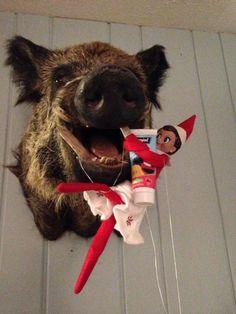 300+ Elf on the Shelf Ideas - Mr. Jingles, his wife Snowflake and their friend Carmela Dolly! - Good Hygiene is important!