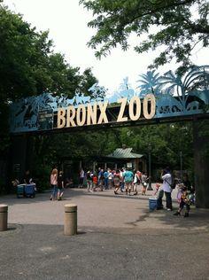 Bronx zoo discount coupon