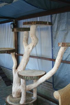 Idea for making an outdoor cat tree.