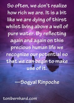 Reflecting on this precious human life, we can recognize our potential. Sogyal Rinpoche