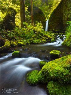 ✯ Paradise Falls - Oregon