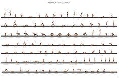 Flow / Vinyasa Yoga