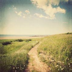 Beach Photograph, Ocean Art, Landscape Photography, Sea, Green, Blue, Wall Art, Path - Summer, Please Return