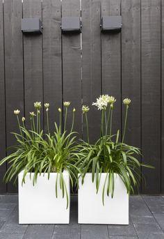 Moderne strakke zwarte schutting met exclusieve verlichting en moderne bloembakken