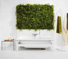 plant wall in bathroom