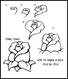 How To Draw flowers | Daryl Hobson Artwork: How To Draw A Rose: Step By Step Guide how to draw a rose, craft, drawing flowers step by step, step by step drawing ideas, draw flowers, how to draw flower, step by step drawing flowers, drawing guide, how to draw roses